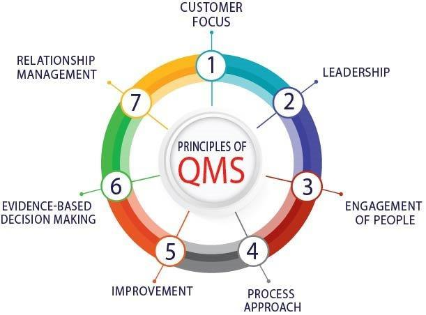 The 7 Principles of Quality Management System (QMS)